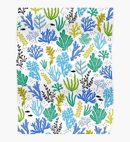 Marine life, seaweed illustration Poster