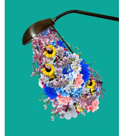 Light is needed to grow flowers Sticker