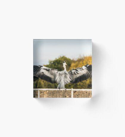 Heron Acrylic Block