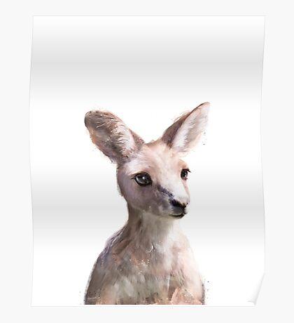Little Kangaroo Poster