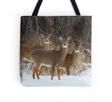 Do Ra Me - White tailed deer Tote Bag