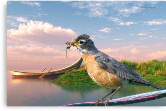 American Robin and a Mouthful by Yannik Hay