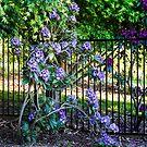 0297  Jenny's Garden by Hazel Hogarth