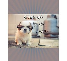Grab life by the puppy. Photographic Print