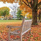Dartmouth Green Hanover New Hampshire Fall Foliage by Edward Fielding