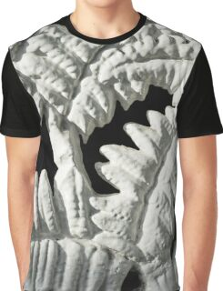 Graceful Black and White Fern Patterns - Take One Graphic T-Shirt