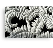 Graceful Black and White Fern Patterns - Take One Canvas Print