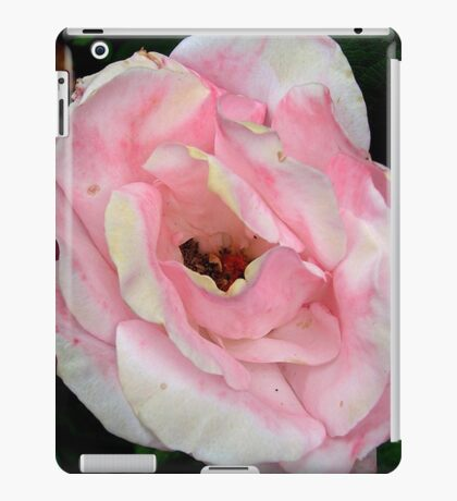 Faded Pink Rose iPad Case/Skin