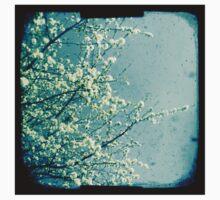 Blossom Baby Tee