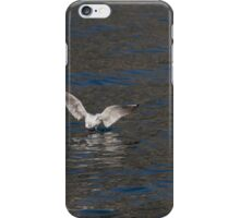 seagull fly on lake iPhone Case/Skin