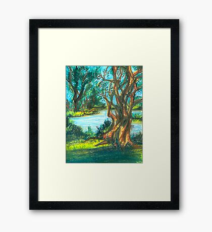 small pond with trees Framed Print