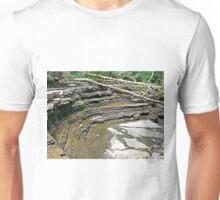 Natural Amphitheater  Unisex T-Shirt