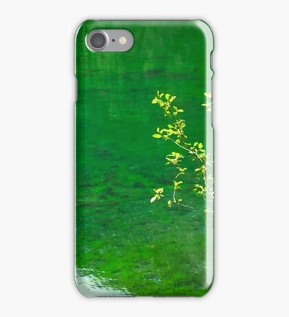 Green Lake and Tree iPhone Case/Skin