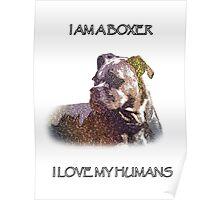 I AM A BOXER Poster
