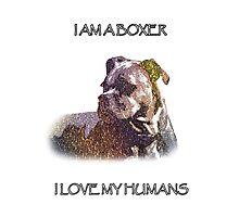 I AM A BOXER Photographic Print