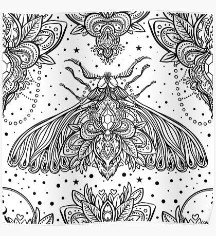 Night Moth Poster