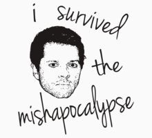 I survived the mishapocalypse by ibx93