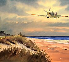 Spitfire MK 9  by bill holkham