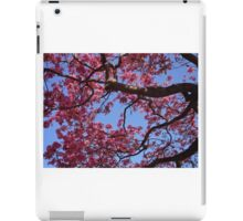Pink Blossoms, Tabebuia Tree iPad Case/Skin