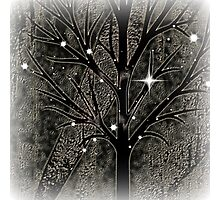 Tree with empty branches in dark cold night  Photographic Print