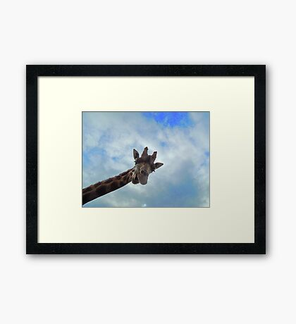 Yo! You down there! Framed Print