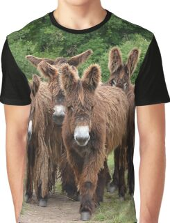 """""""Baudet du Poitou 07"""" Graphic T-Shirt"""