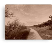 mysterious but beautiful nature Canvas Print