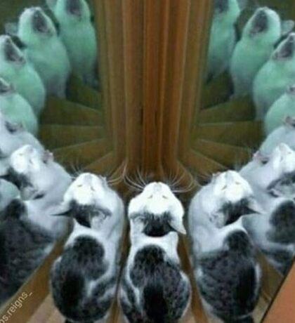 Trippy Cat Mirror Sticker