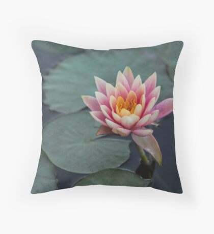 Pink water lily background. Throw Pillow