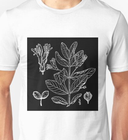 Britton And Brown Illustrated flora of the northern states and Canada 0940 Lonicera oblongifolia BB 1913 Unisex T-Shirt