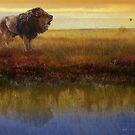 savanna reflection african lion by R Christopher  Vest