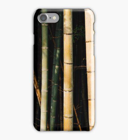 Bamboo Spectrum iPhone Case/Skin