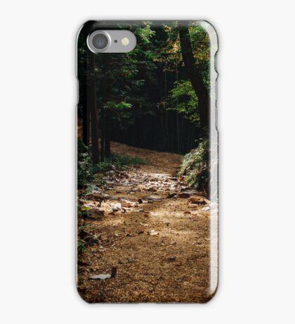 Trail Lights iPhone Case/Skin