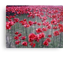 Poppies At The Tower Of London Metal Print