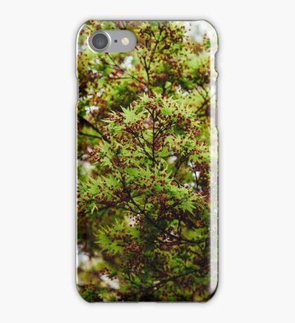 Fresh Japanese Maple iPhone Case/Skin