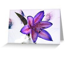 Many Shades Of Lily. Greeting Card
