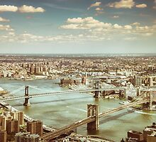 New York City - Skyline from Above  by Vivienne Gucwa