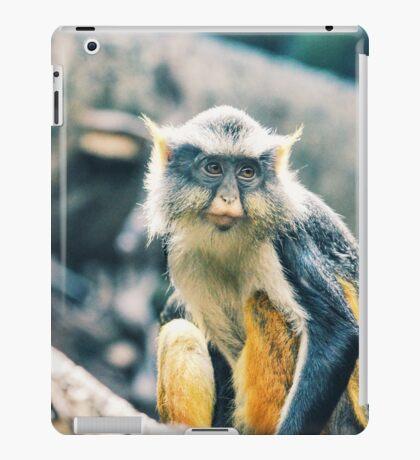 Monkey Hanging iPad Case/Skin