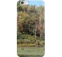 A Touch of Color iPhone Case/Skin