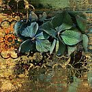 Hydrangeas on gold by © Kira Bodensted