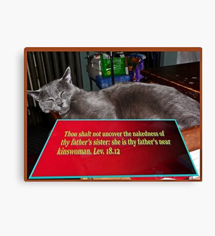 Cat with bible verse text 2 Canvas Print