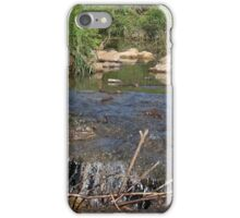 Down the Hole iPhone Case/Skin