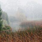 Morning Fog In Hampton East  by Karen E Camilleri
