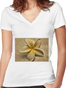 ~paramnesia~ Women's Fitted V-Neck T-Shirt