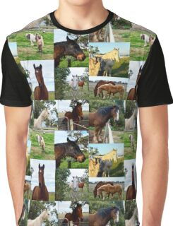 Horses In A Photo Collarge Graphic T-Shirt
