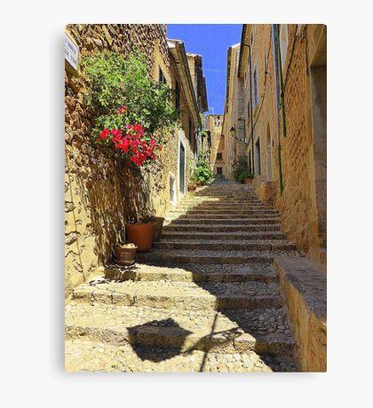 Steps In Shadow..................................Majorca Canvas Print