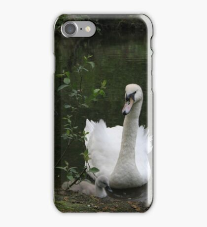 Swan and gosling iPhone Case/Skin