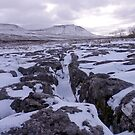 Limestone Pavement at Ingleborough by mikebov