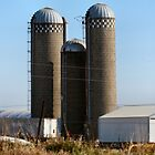 Silo Family :) by MoreKeala