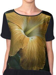 Hibiscus stamen Leith Park Victoria 20160420 6855  Chiffon Top